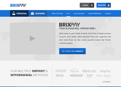 Custom - Brixpay